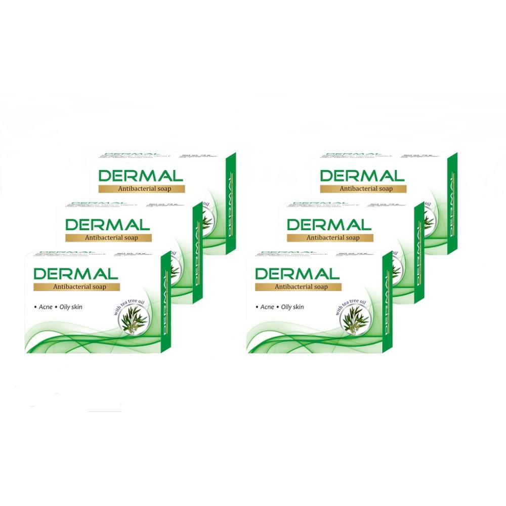 Biotrex Dermal Antibacterial Bath Soap (75g, Pack of 6)