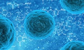 Coronavirus And Homoeopathy