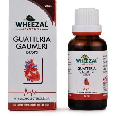Wheezal Guatteria Gaumeri Drops (30ml)